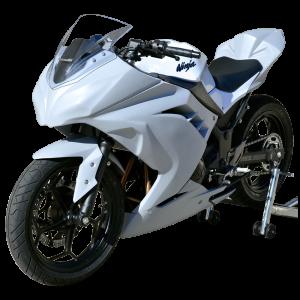 Kawasaki_ninja300_13-15_race_bodywork-1
