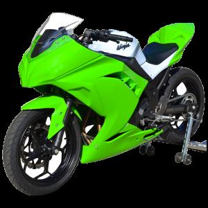 Kawasaki_ninja300_13-15_race_bodywork_green-1
